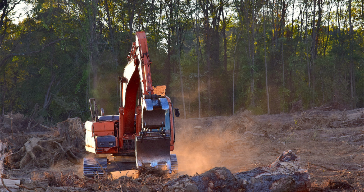 THE BASICS OF LAND CLEARING